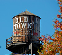 The Oldtown Water Tower